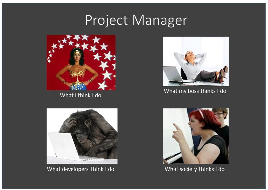 eight reasons why project managers are not respected